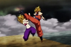 Dragon Ball Super Épisode 100 (144)