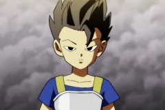 Dragon Ball Super Épisode 100 (21)