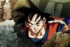 Dragon Ball Super Épisode 100 (259)