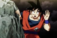Dragon Ball Super Épisode 100 (305)