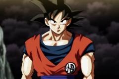 Dragon Ball Super Épisode 100 (310)