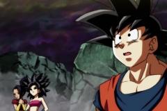 Dragon Ball Super Épisode 101 (41)