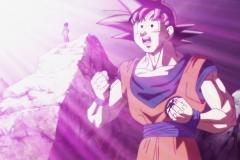 Dragon Ball Super Épisode 102 (25)