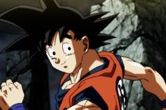 Dragon Ball Super Épisode 102 (8)