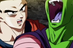 Dragon Ball Super Épisode 106 (23)