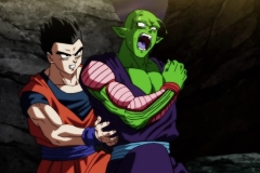 Dragon Ball Super Épisode 106 (25)