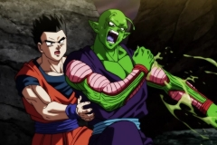 Dragon Ball Super Épisode 106 (27)