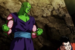 Dragon Ball Super Épisode 106 (6)