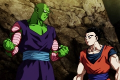 Dragon Ball Super Épisode 106 (7)