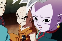 Dragon Ball Super Épisode 107 (25)
