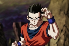 Dragon Ball Super Épisode 108 (47)
