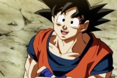 Dragon Ball Super Épisode 109 (11)