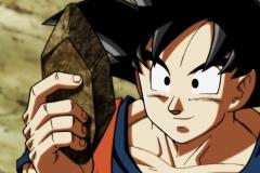 Dragon Ball Super Épisode 109 (13)