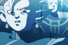 Dragon Ball Super Épisode 110 (28)