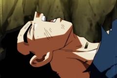 Dragon Ball Super Épisode 112 (16)