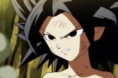 Dragon Ball Super Épisode 112 (44)