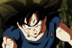 Dragon Ball Super Épisode 112 (5)