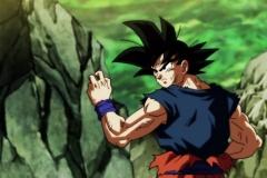 Dragon Ball Super Épisode 113 (1)