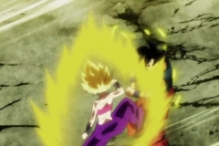 Dragon Ball Super Épisode 113 (13)