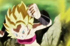 Dragon Ball Super Épisode 113 (14)