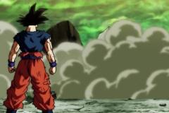 Dragon Ball Super Épisode 113 (20)