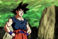 Dragon Ball Super Épisode 113 (21)