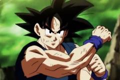 Dragon Ball Super Épisode 113 (24)