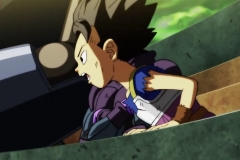 Dragon Ball Super Épisode 113 (26)