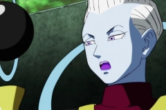Dragon Ball Super Épisode 113 (28)
