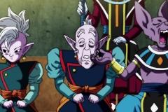 Dragon Ball Super Épisode 113 (30)