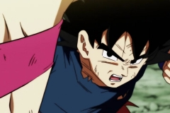 Dragon Ball Super Épisode 113 (34)