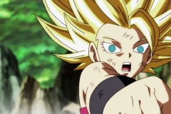 Dragon Ball Super Épisode 113 (43)