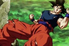 Dragon Ball Super Épisode 113 (6)