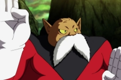 Dragon Ball Super  Épisode 114 (15)