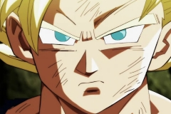 Dragon Ball Super  Épisode 114 (39)