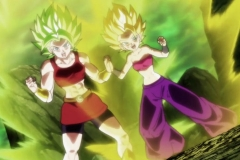 Dragon Ball Super  Épisode 114 (43)