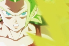 Dragon Ball Super  Épisode 114 (45)