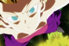Dragon Ball Super  Épisode 114 (48)