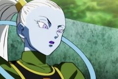 Dragon Ball Super Épisode 115 (126)