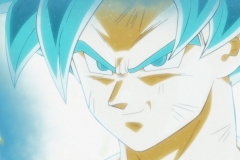 Dragon Ball Super Épisode 115 (143)