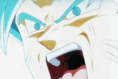 Dragon Ball Super Épisode 115 (144)