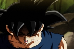Dragon Ball Super Épisode 115 (225)
