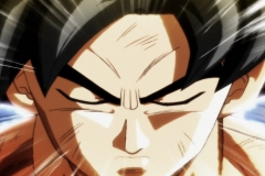 Dragon Ball Super Épisode 115 (238)