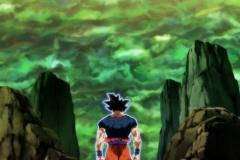 Dragon Ball Super Épisode 115 (241)