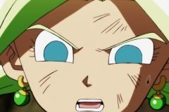 Dragon Ball Super Épisode 115 (250)