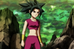 Dragon Ball Super Épisode 115 (29)