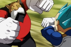 Dragon Ball Super Épisode 115 (35)