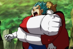 Dragon Ball Super Épisode 115 (39)