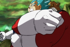 Dragon Ball Super Épisode 115 (40)