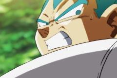 Dragon Ball Super Épisode 115 (41)